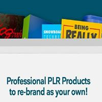 Professional PLR Products to re-brand as your own